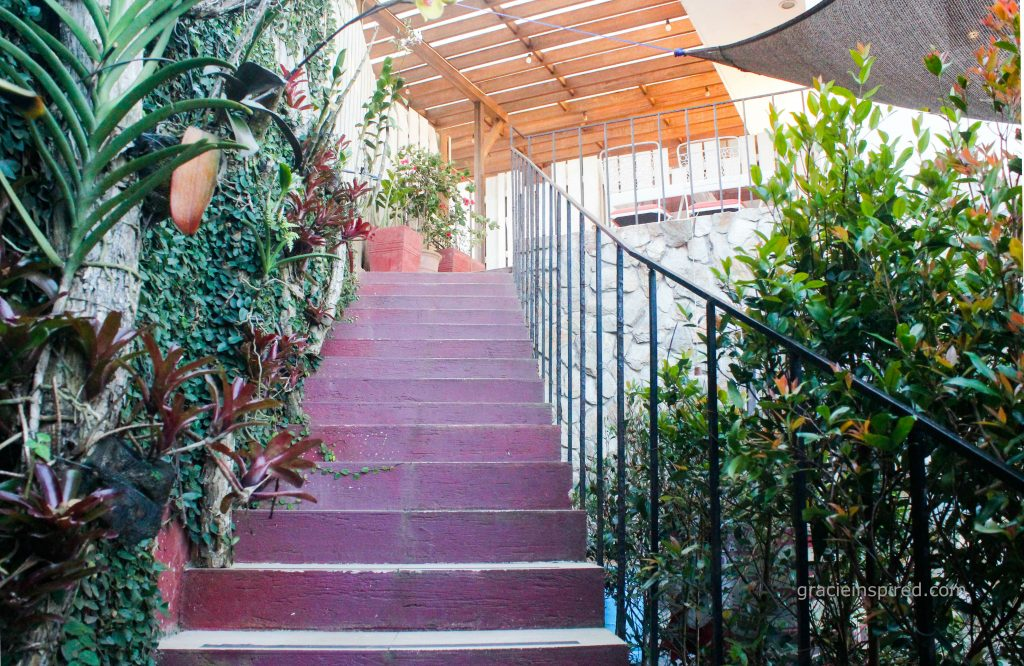 Stairs leading to the garden
